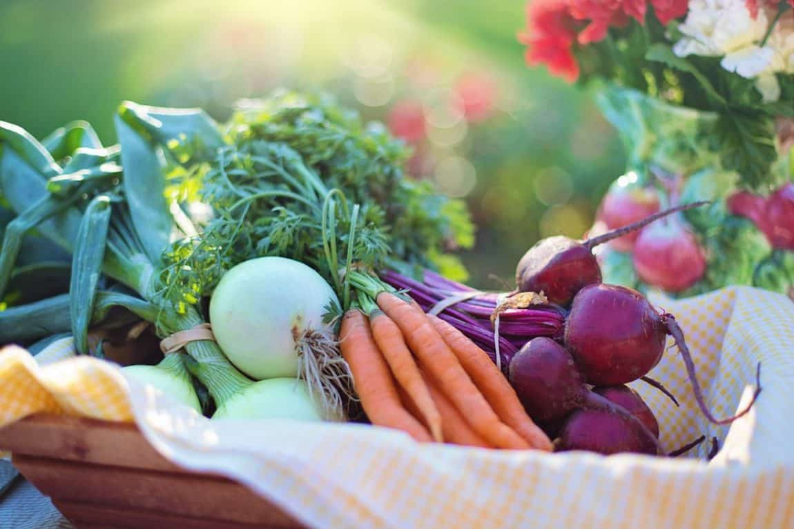 Nutritional Counseling Gw Center For Integrative Medicine
